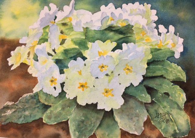 white primroses.jpg