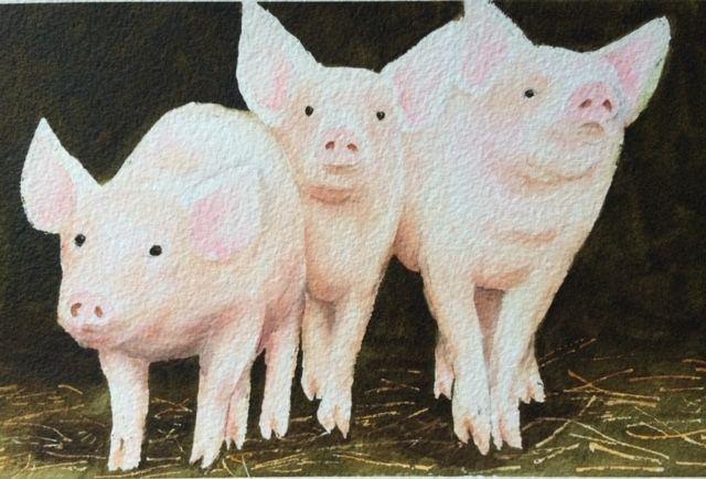 acapella pigs.jpg