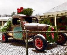 Christmas tree truck photo refence.jpg
