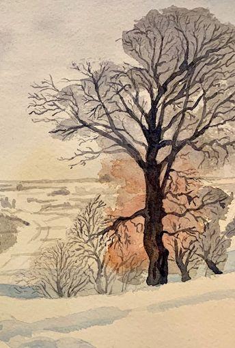 Meadow road tree.jpg