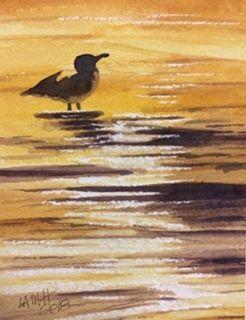 Golden seagull.jpg
