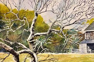 Spring pasture tree line.jpg