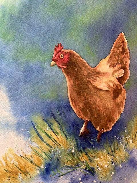 Wren's Hen.jpg