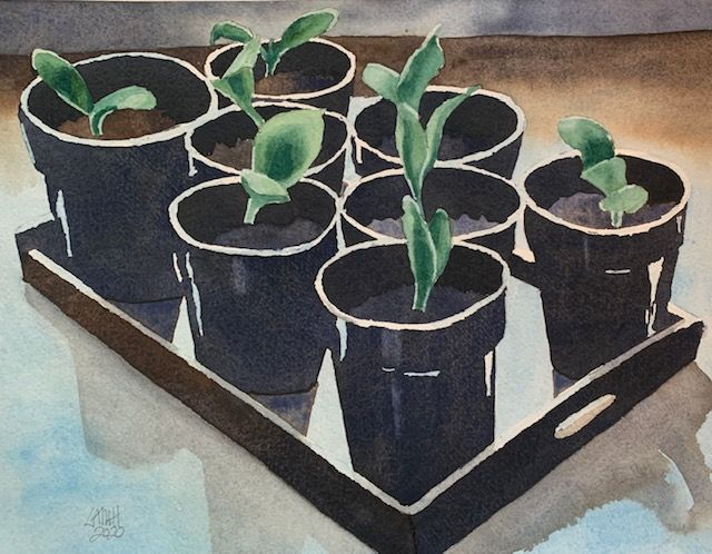 Seedlings Painting